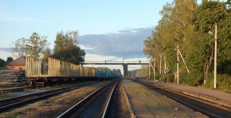 Пешеходный мост на станции Струги Красные