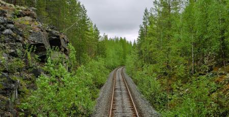 Железнодорожная линия Алакуртти — Салла