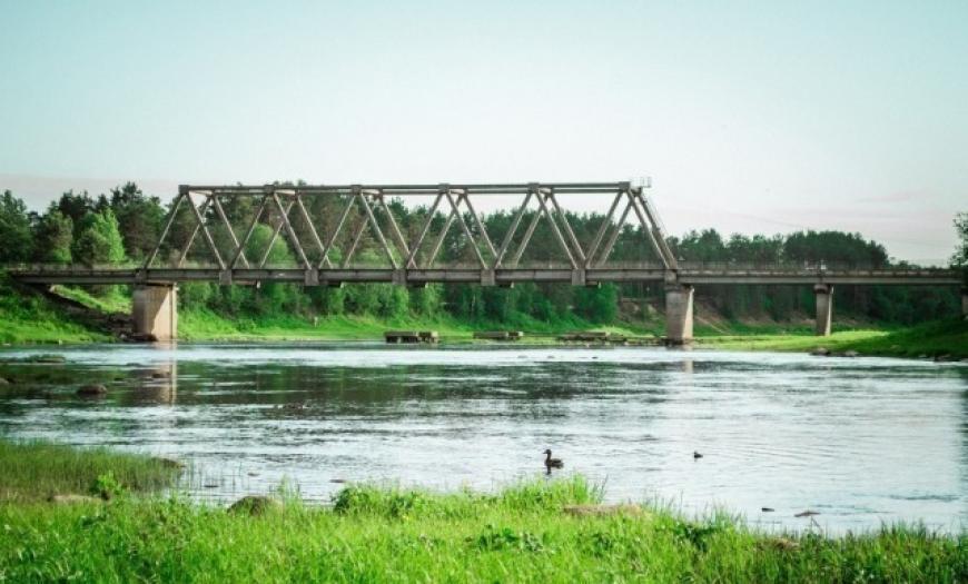 Пешеходный мост через реку Важинку