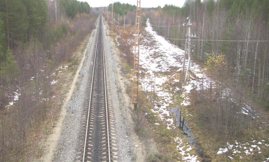 Железнодорожная линия Ледмозеро — Вача — Кочкома